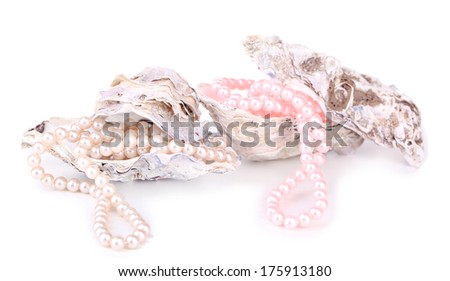 Shells with pearls, isolated on white - stock photo