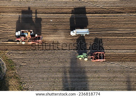 Shelly, Idaho, USA 10 Sept, 2014- An aerial view of farm machinery in the field harvesting potatoes.  The potatoes are dug by a combine, and trucked to a cellar for winter storage. - stock photo