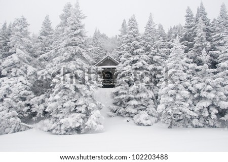 Shelter in the White Mountains of New Hampshire