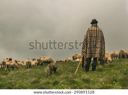 shepherd the flock of god pdf