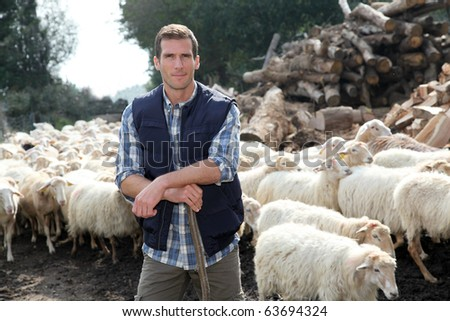 Shepherd standing by sheep in meadow - stock photo