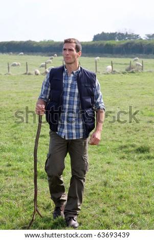 Shepherd standing in pasture land - stock photo
