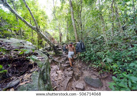 Sherpas walking in forest at phu kradueng nation park of thailand