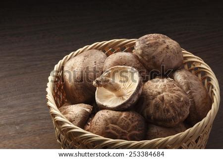 Shiitake mushroom - stock photo