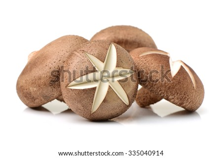 Shiitake mushroom on the White background  - stock photo