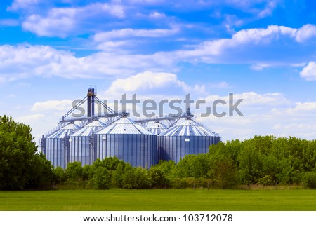 Shiloh in the field, cloudy sky. - stock photo