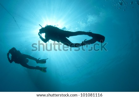 shilouetted scuba divers swim in the deep blue ocean