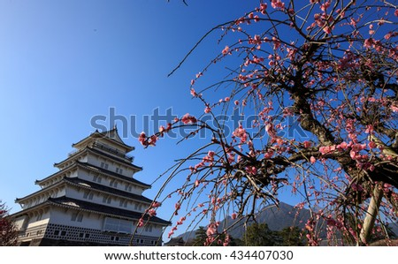 Shimabara castle and Japanese apricot in Japan