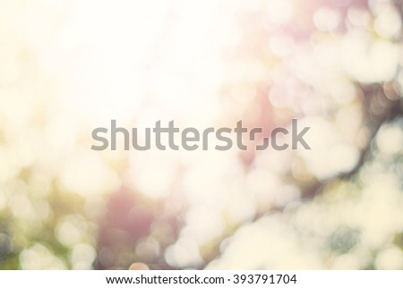 Shine Light Spring Beautiful Natural Foliage Bokeh Background Yellow Pink Pastel Color Toned Shine  - stock photo