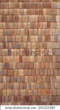 Shingle 7 - stock photo