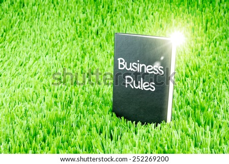 "Shining Black book on grass with "" Success Rules "" word, Business and Education concept - stock photo"