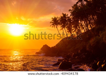 Shiny colorful sunset on tropical beach with palm trees silhouettes - stock photo