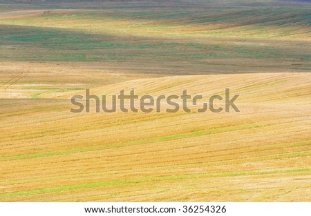 shiny hilly stubble field in autumn - stock photo