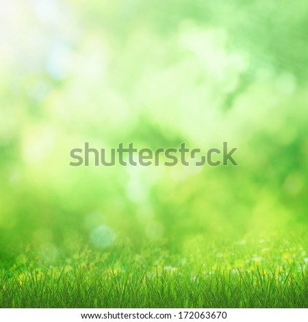 Shiny spring natural background