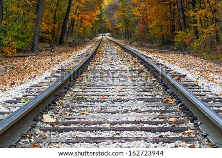 Shiny steel railroad tracks lead the eye trough trees with vivid fall colors. - stock photo