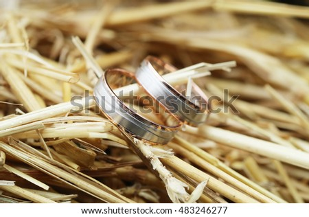 Shiny wedding rings on hay background