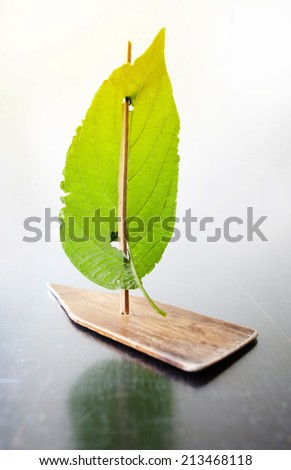 Ship. Sail from an autumn leaf. - stock photo