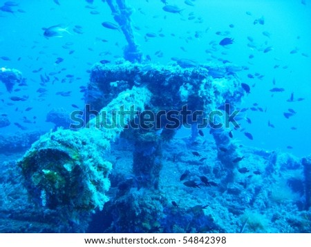 Ship wreck underwater with fishes