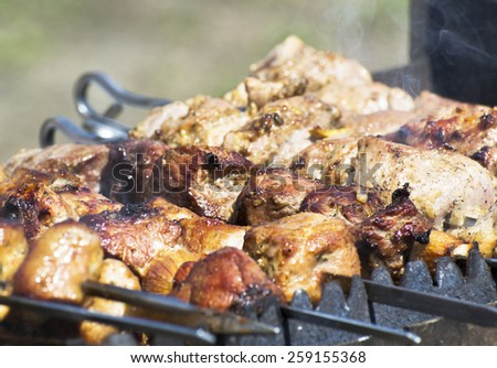 Shish kebab in summer day - stock photo