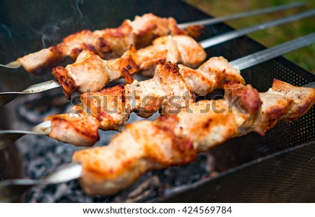 Shish kebab on metal skewers outdoor picnic - stock photo