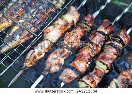 Shish kebab on skewers and hot coals, DOF - stock photo