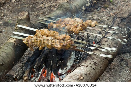 Shish kebab on skewers roasted over a campfire, picnic