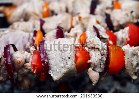 Shish kebab on the grill with smoke. - stock photo