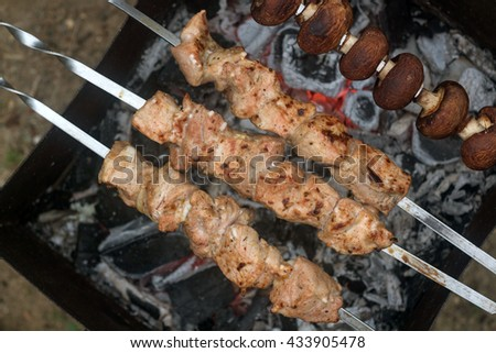 Shish kebab. skewers of pork and mushrooms on the red coals. roasted on coal marinated kebabs - stock photo
