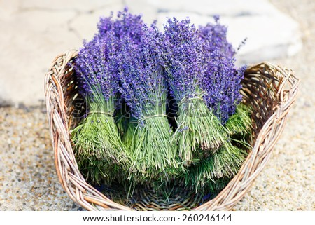 Shop in Provence decorated with lavender and vintage things - stock photo