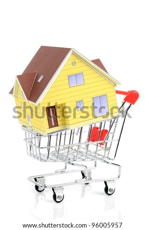 Shopping cart and model house