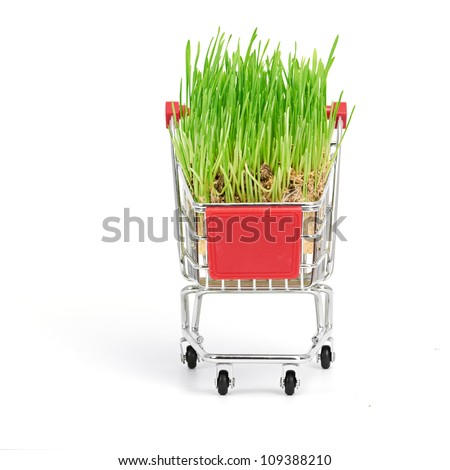 shopping cart isolated on a white background - stock photo