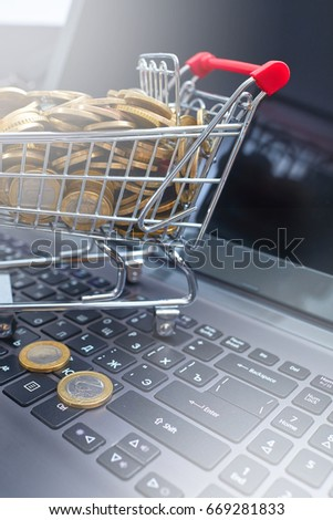 Shopping in an online store, a concept with a cart