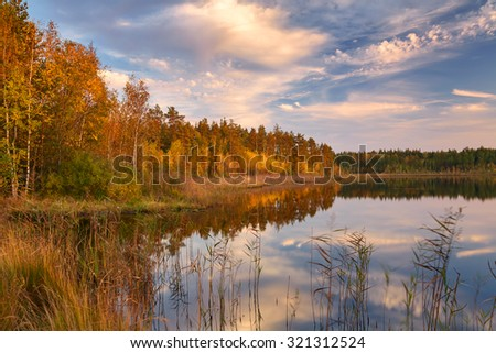 Shore a forest lake with birch trees on the Bank in autumn day with good weather