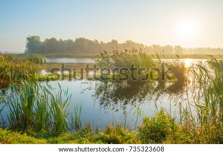Shore of a misty lake at sunrise in autumn