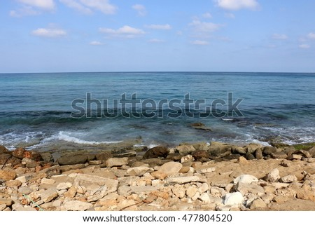 shore of the Mediterranean Sea
