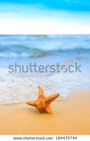 Shore Sign Star