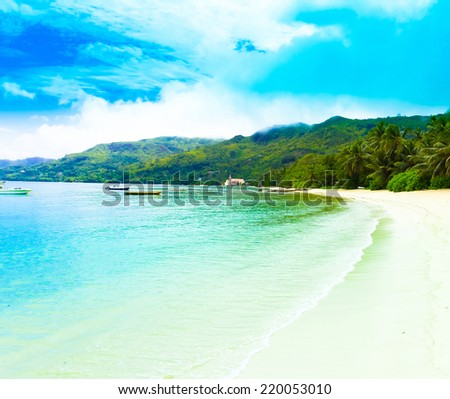Shore Tranquility Palms  - stock photo