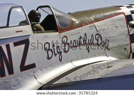 SHOREHAM, W SUSSEX - AUGUST 23: A pilot switches off his engine after a flying routine involving American WW II Mustang aircraft Shoreham Airport airshow August 23, 2009 in Shoreham, UK.