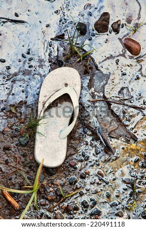 Shoreline contaminated with garbage and hazardous toxic chemical gasoline waste.  A discarded child's sandal serves an iconic reminder of the human carbon footprint.    - stock photo