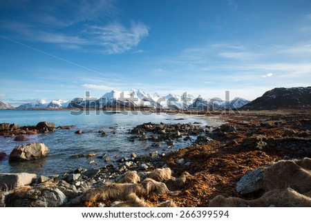 Shoreline Winter landscape, Lofoten, Norway