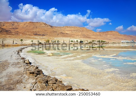 Shores of the Dead Sea in Israel. Path of evaporated salt. Along the shore with palm trees, which are reflected in the water - stock photo