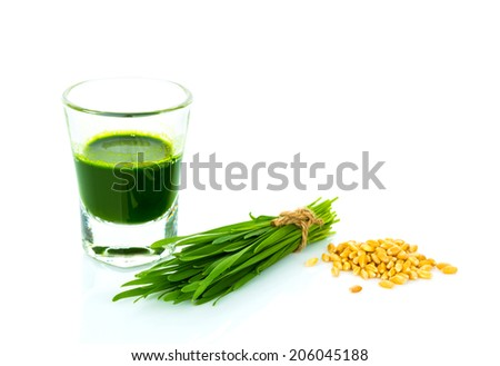 Shot glass of wheat grass with fresh cut wheat grass and wheat grains - stock photo