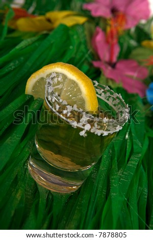 Shot of tequila on a grass skirt - stock photo
