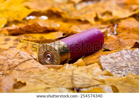 Shotgun cartridge on fallen leaves - stock photo