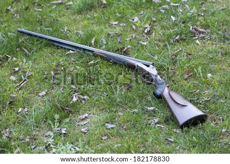 Shotgun on grass - stock photo