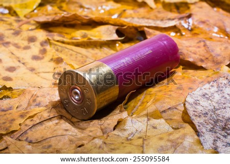 shotgun shell that has been used on the ground - stock photo