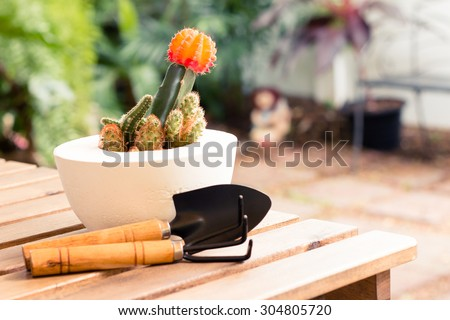 Shovel and gardening fork with cactus pot on wooden table in garden - vintage style effect picture - stock photo