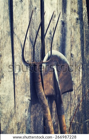 Shovel and pitchfork on a wooden background. Old garden tools. - stock photo