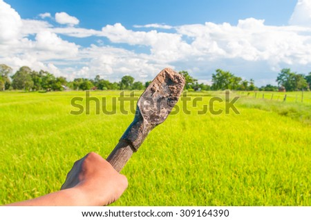 shovel in hand with blurry rice background - stock photo