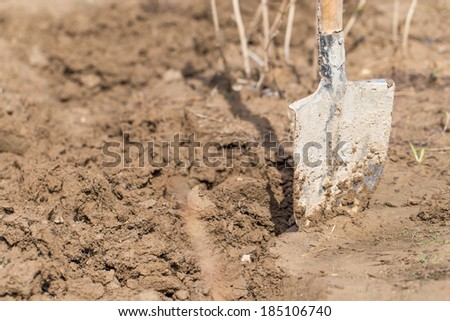 Shovel in the soil - stock photo